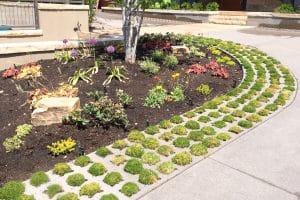 Concrete voids called grasscrete house small clusters of flora.