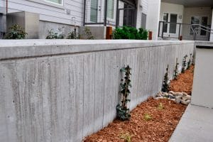 Short board form wall in residential courtyard