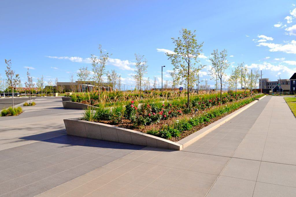 Northfield Conservatory Green had planter walls made with sandscape.